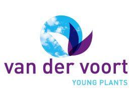 Van der Voort Young Plants