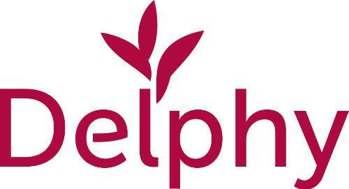 Delphy